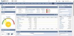 SuiteSuccess for Wholesale Distribution Businesses